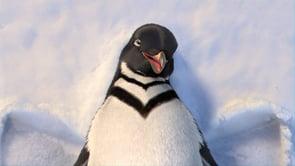 Discovery-Penguin thumbnail